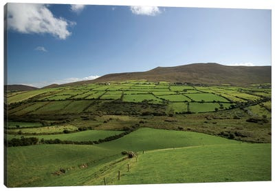 Irish Countryside, Ireland, Farms, Landscape, Scenic Canvas Art Print