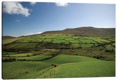 Irish Countryside, Ireland, Farms, Landscape, Scenic Canvas Art Print
