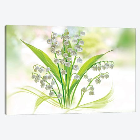 Lily Of The Valley Canvas Print #PKR14} by Jacky Parker Canvas Artwork