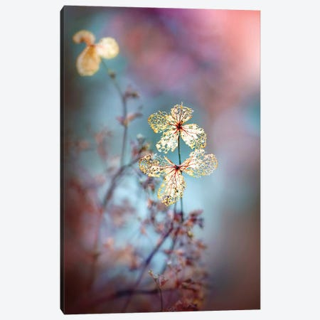 Simple Nature 3-Piece Canvas #PKR3} by Jacky Parker Canvas Wall Art