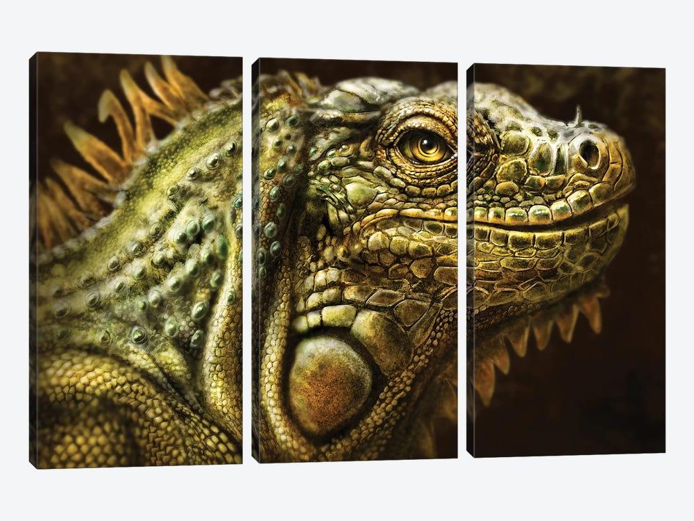 Iguana by Patrick LaMontagne 3-piece Canvas Art