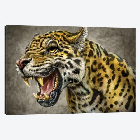 Jaguar Canvas Print #PLA18} by Patrick LaMontagne Art Print