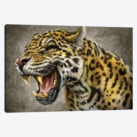 Jaguar Canvas Print #PLA18} by Patrick LaMontagne Art Print