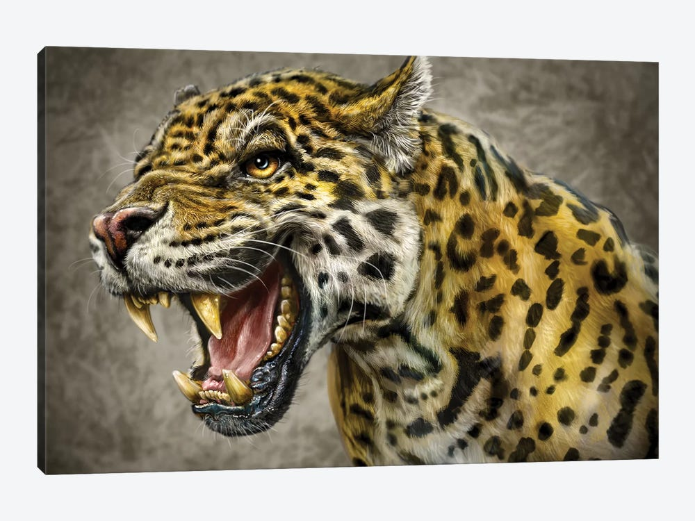 Jaguar by Patrick LaMontagne 1-piece Canvas Art Print