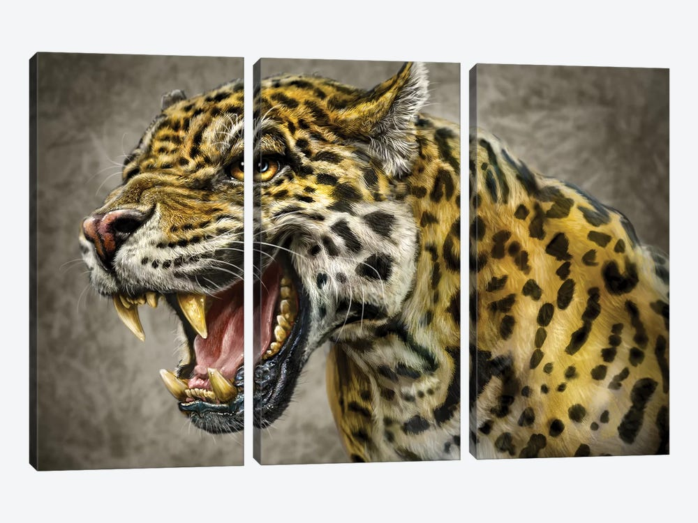 Jaguar by Patrick LaMontagne 3-piece Canvas Print