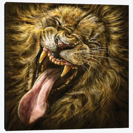 Laughing Lion Canvas Print #PLA21} by Patrick LaMontagne Canvas Art
