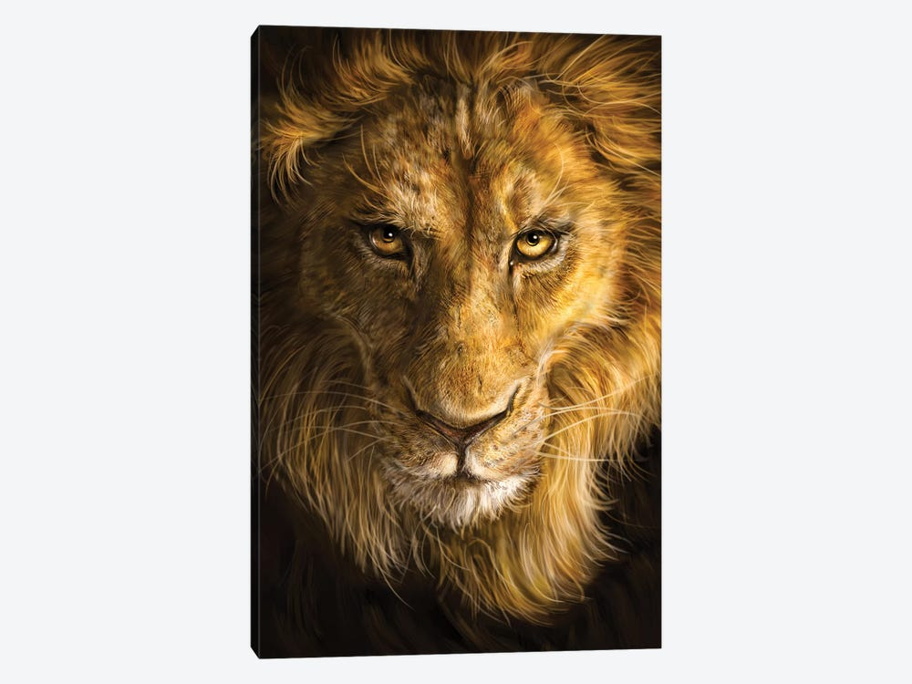 Lion by Patrick LaMontagne 1-piece Canvas Art