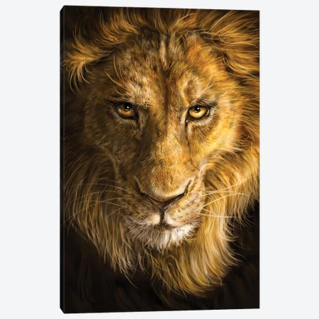 Lion 3-Piece Canvas #PLA22} by Patrick LaMontagne Canvas Art