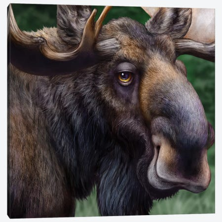 Moose Totem Canvas Print #PLA25} by Patrick Lamontagne Canvas Print