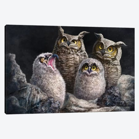One In Every Family 3-Piece Canvas #PLA27} by Patrick LaMontagne Art Print