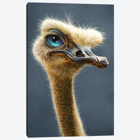 Ostrich Totem Canvas Print #PLA28} by Patrick Lamontagne Canvas Art