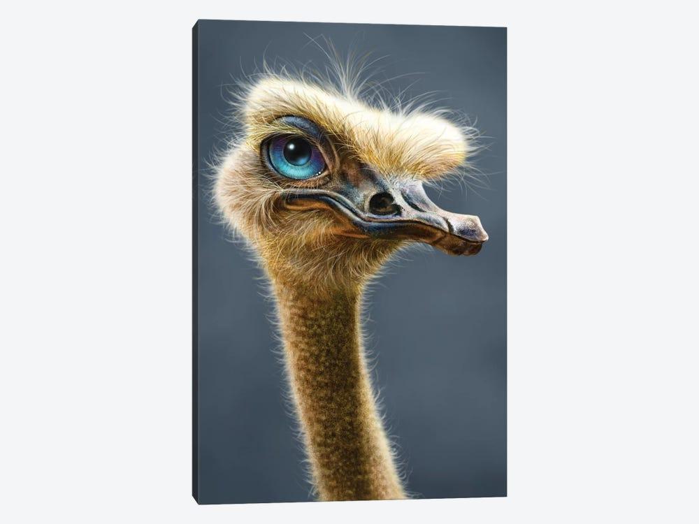 Ostrich by Patrick LaMontagne 1-piece Canvas Wall Art