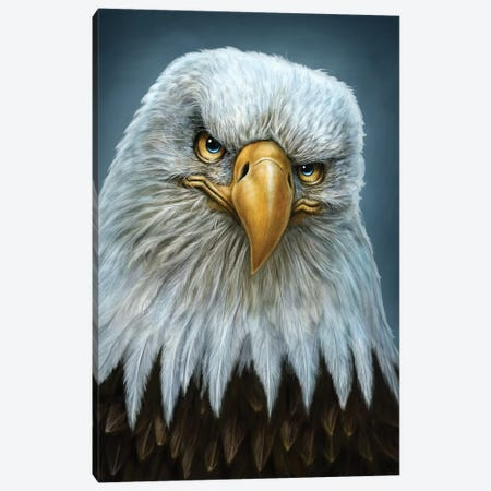 Bald Eagle Totem Canvas Print #PLA2} by Patrick Lamontagne Canvas Print