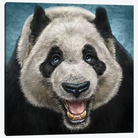 Panda Face Canvas Print #PLA31} by Patrick LaMontagne Canvas Art Print
