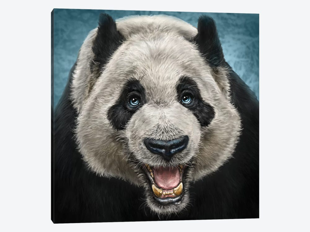 Panda Face by Patrick LaMontagne 1-piece Canvas Art