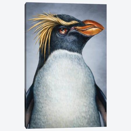 Penguin Canvas Print #PLA34} by Patrick LaMontagne Canvas Artwork