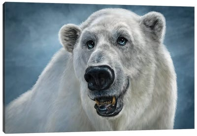 Polar Bear Canvas Art Print