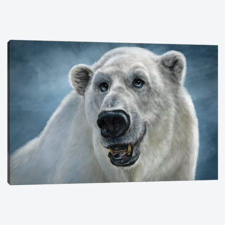 Polar Bear Canvas Print #PLA35} by Patrick LaMontagne Canvas Artwork