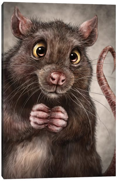 Rat Canvas Art Print