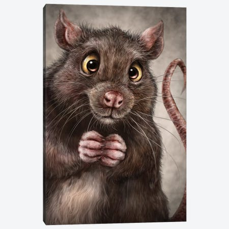 Rat Canvas Print #PLA37} by Patrick LaMontagne Canvas Wall Art