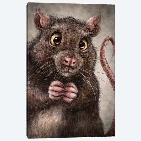 Rat Canvas Print #PLA37} by Patrick LaMontagne Canvas Wall Art