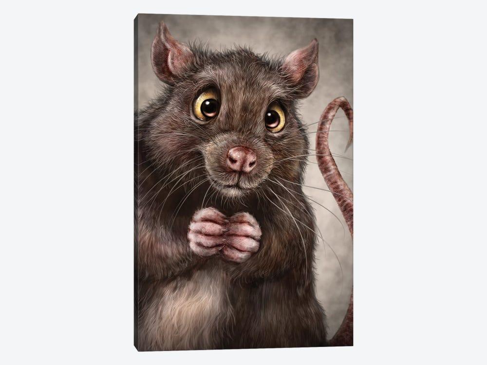 Rat by Patrick LaMontagne 1-piece Canvas Wall Art