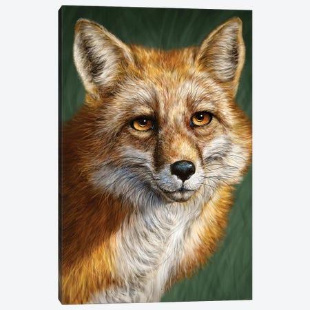 Red Fox Canvas Print #PLA39} by Patrick LaMontagne Art Print