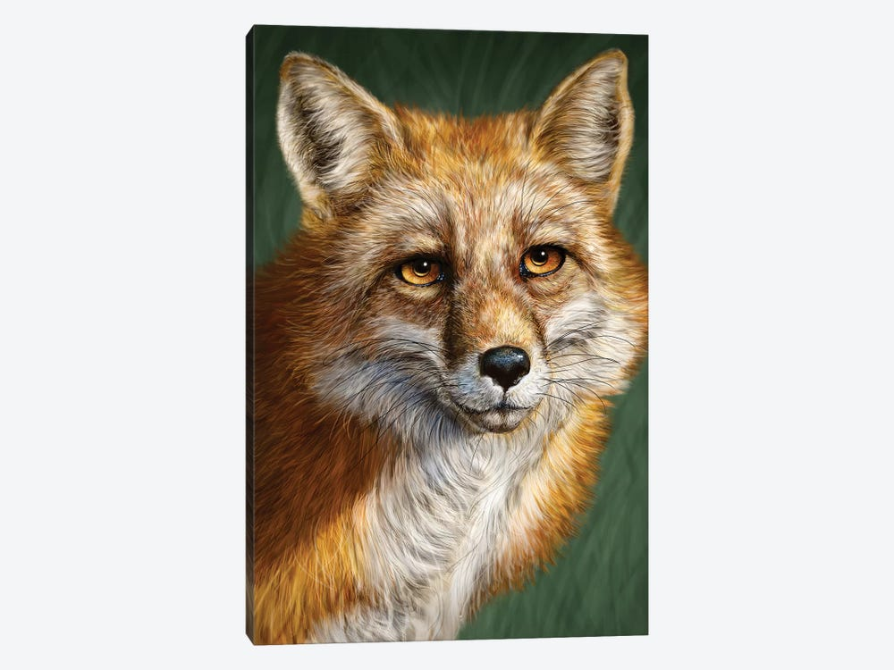 Red Fox by Patrick LaMontagne 1-piece Canvas Art