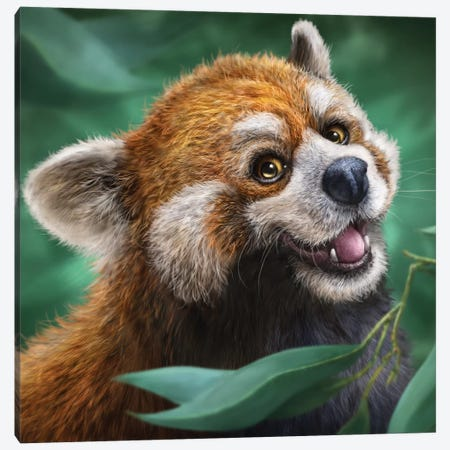 Red Panda Totem Canvas Print #PLA40} by Patrick Lamontagne Canvas Wall Art