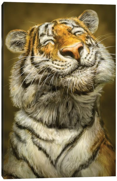 Smiling Tiger Canvas Art Print