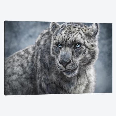 Snow Leopard Canvas Print #PLA44} by Patrick LaMontagne Canvas Art Print