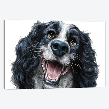 Springer Spaniel Canvas Print #PLA45} by Patrick LaMontagne Canvas Art Print