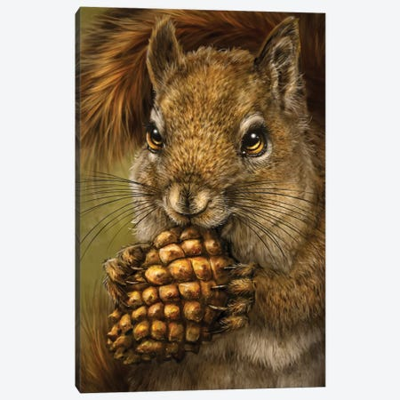 Squirrel Canvas Print #PLA46} by Patrick LaMontagne Art Print