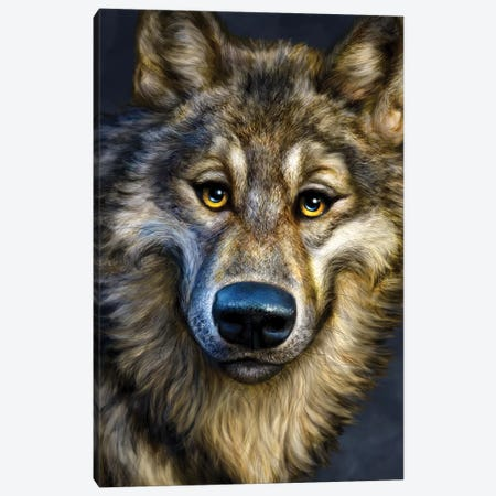 Wolf Canvas Print #PLA49} by Patrick LaMontagne Canvas Art