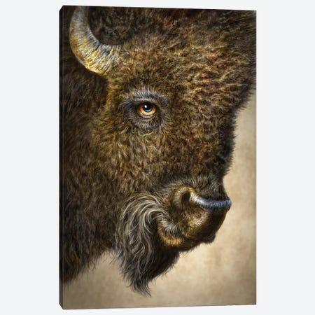 Bison 3-Piece Canvas #PLA5} by Patrick LaMontagne Canvas Artwork