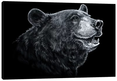 Black Bear - Black & White Canvas Art Print