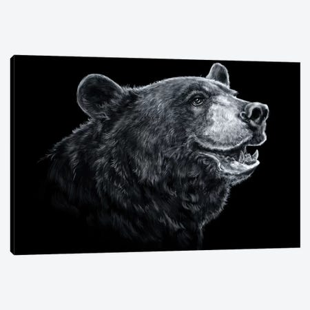 Black Bear - Black & White 3-Piece Canvas #PLA6} by Patrick LaMontagne Canvas Art