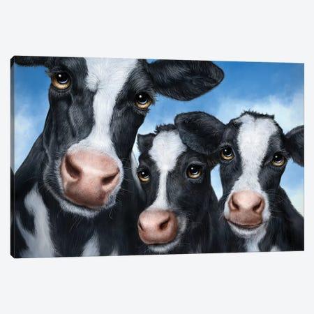 Cows Canvas Print #PLA9} by Patrick LaMontagne Art Print