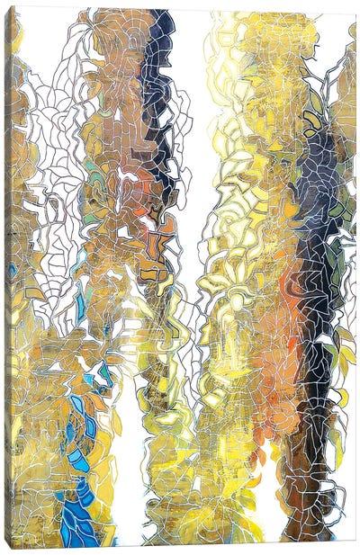 Conceal Lightness Canvas Art Print