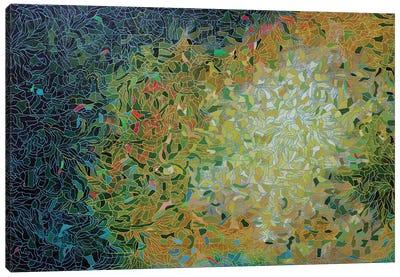 Beyond the Brightness Canvas Art Print