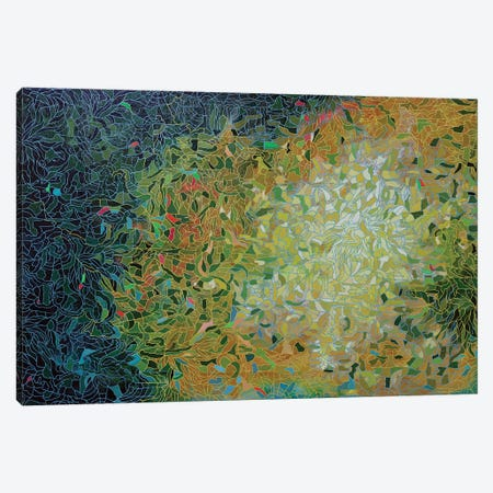 Beyond the Brightness Canvas Print #PLE6} by Peggy Lee Canvas Artwork
