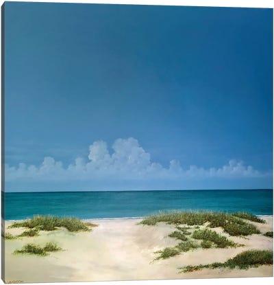 Beach Access Canvas Art Print