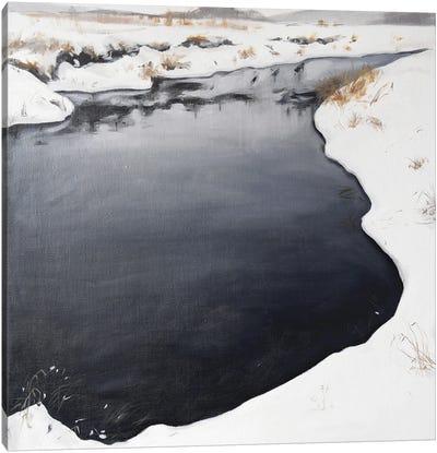 Frozen River Canvas Art Print
