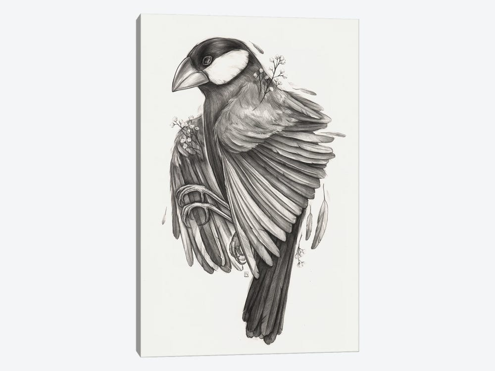 Finch Bird by Polina Kharlamova 1-piece Canvas Art