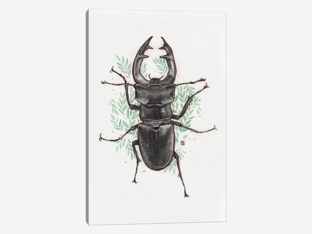 Stag Beetle by Polina Kharlamova 1-piece Canvas Wall Art