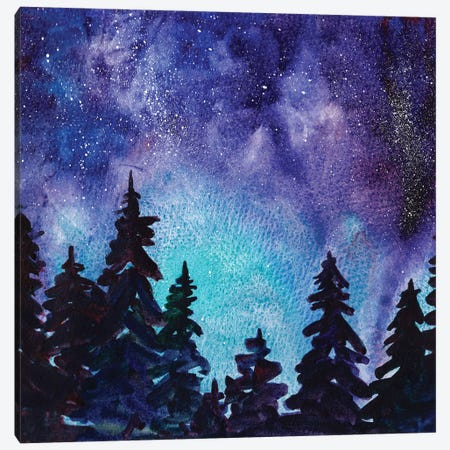 Night Sky III Canvas Print #PLM14} by Paul Mccreery Canvas Wall Art