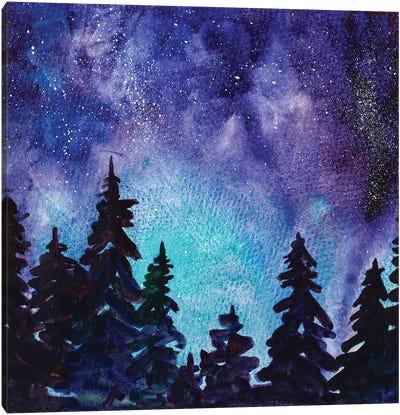 Night Sky III Canvas Art Print