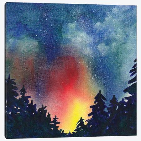 Night Sky IV Canvas Print #PLM15} by Paul Mccreery Canvas Art