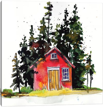 Rad Cabin III Canvas Art Print