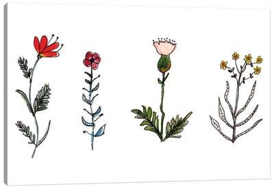 Botanical Vibes I Canvas Art Print